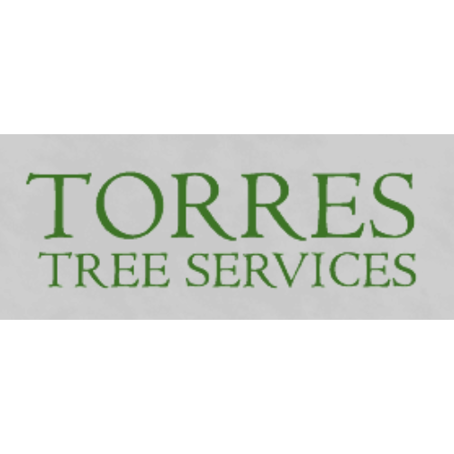 Torres Lawn & Trimming Service image 4