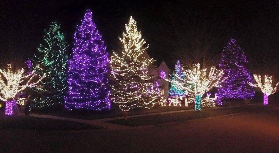 Christmas Creations LLC image 5