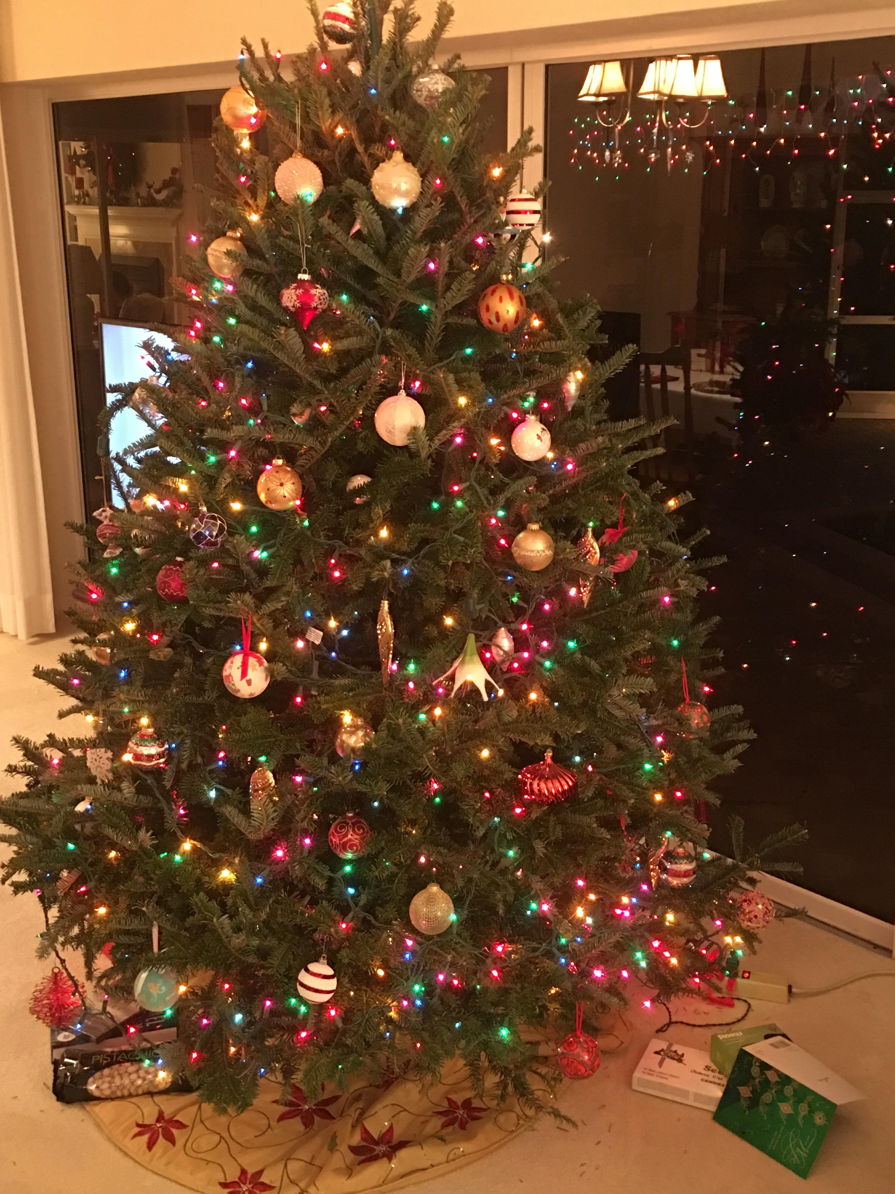 Dave's Christmas Tree Lot image 67