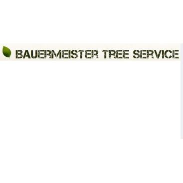 Bauermeister Tree Service