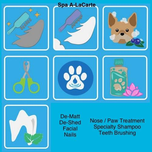 The Room & Groom, Pet Spa & Services image 4