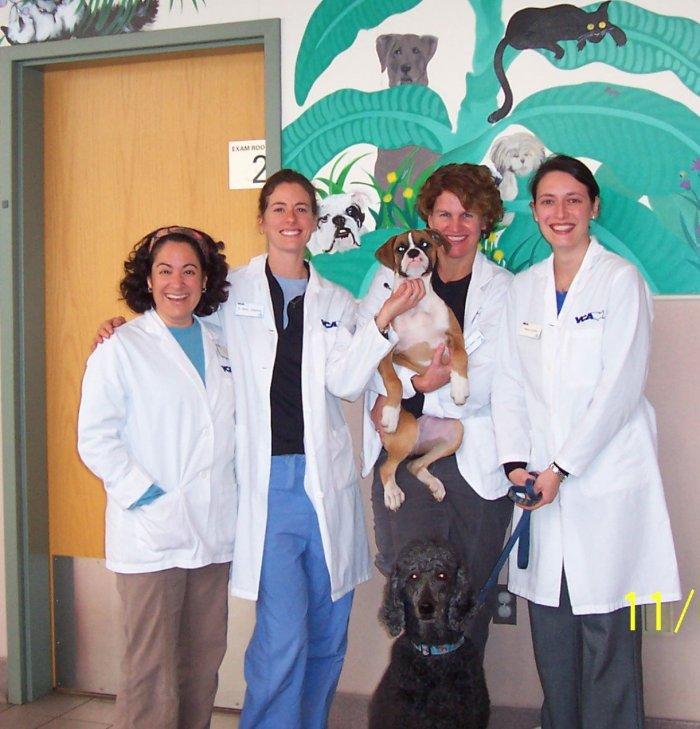 VCA Brown Animal Hospital image 0