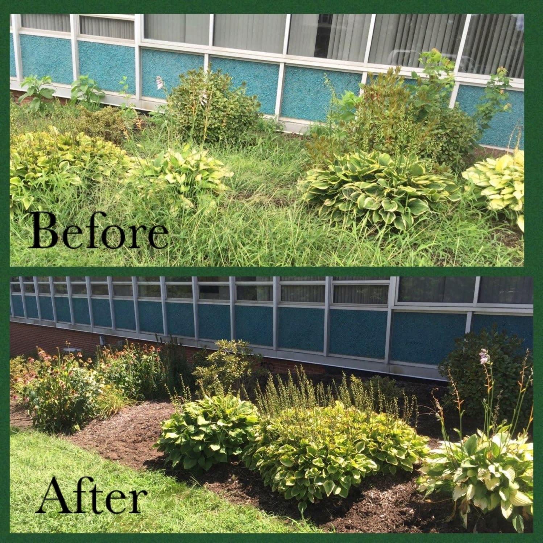 Nature's Way Plant Service, LLC image 3
