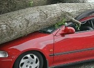 Bergeron Insurance Agency LLC image 3