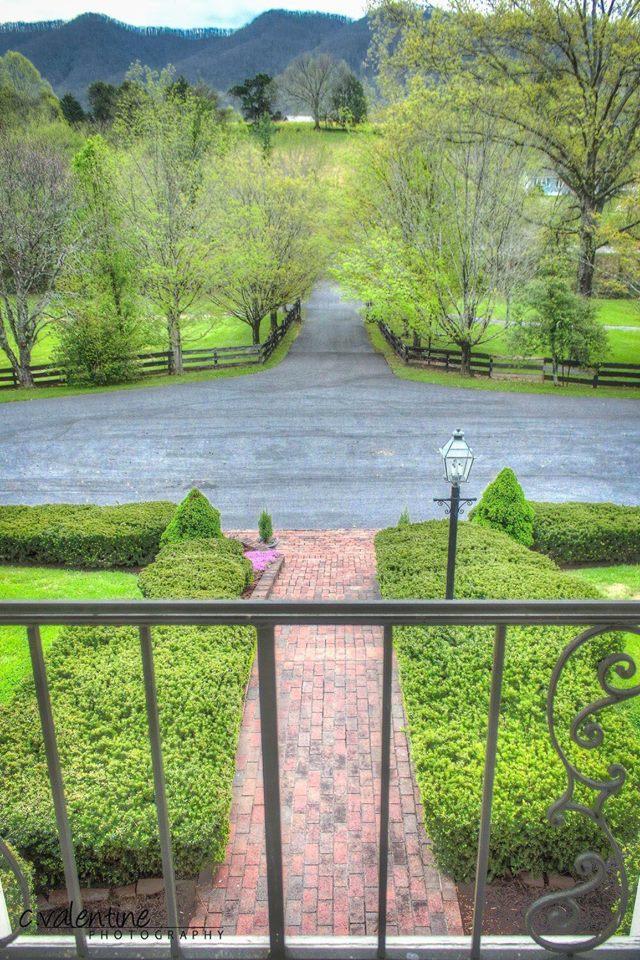 Maple Lane Farm image 11
