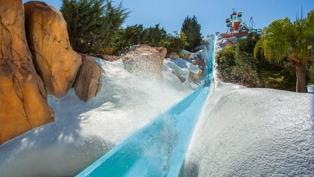 Walt Disney World® Resort image 59