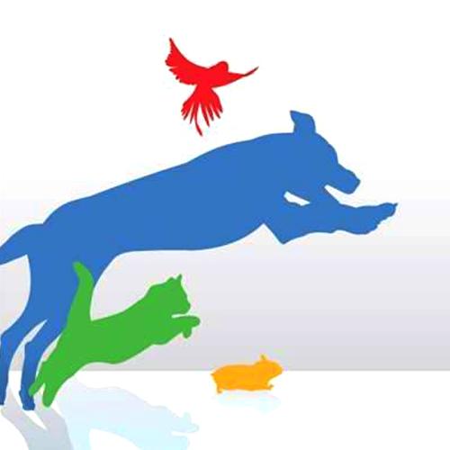 Sit-A-Pet image 2