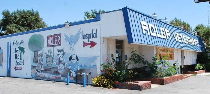 VCA Adler Animal Hospital and Pet Resort in North Hills, CA, photo #8