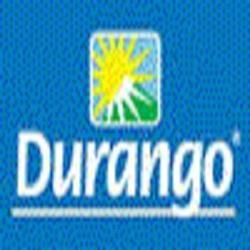 Durango S.A. de C.V.