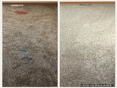 Xtreme Carpet and Tile Cleaning image 0