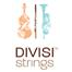 divisi strings llc