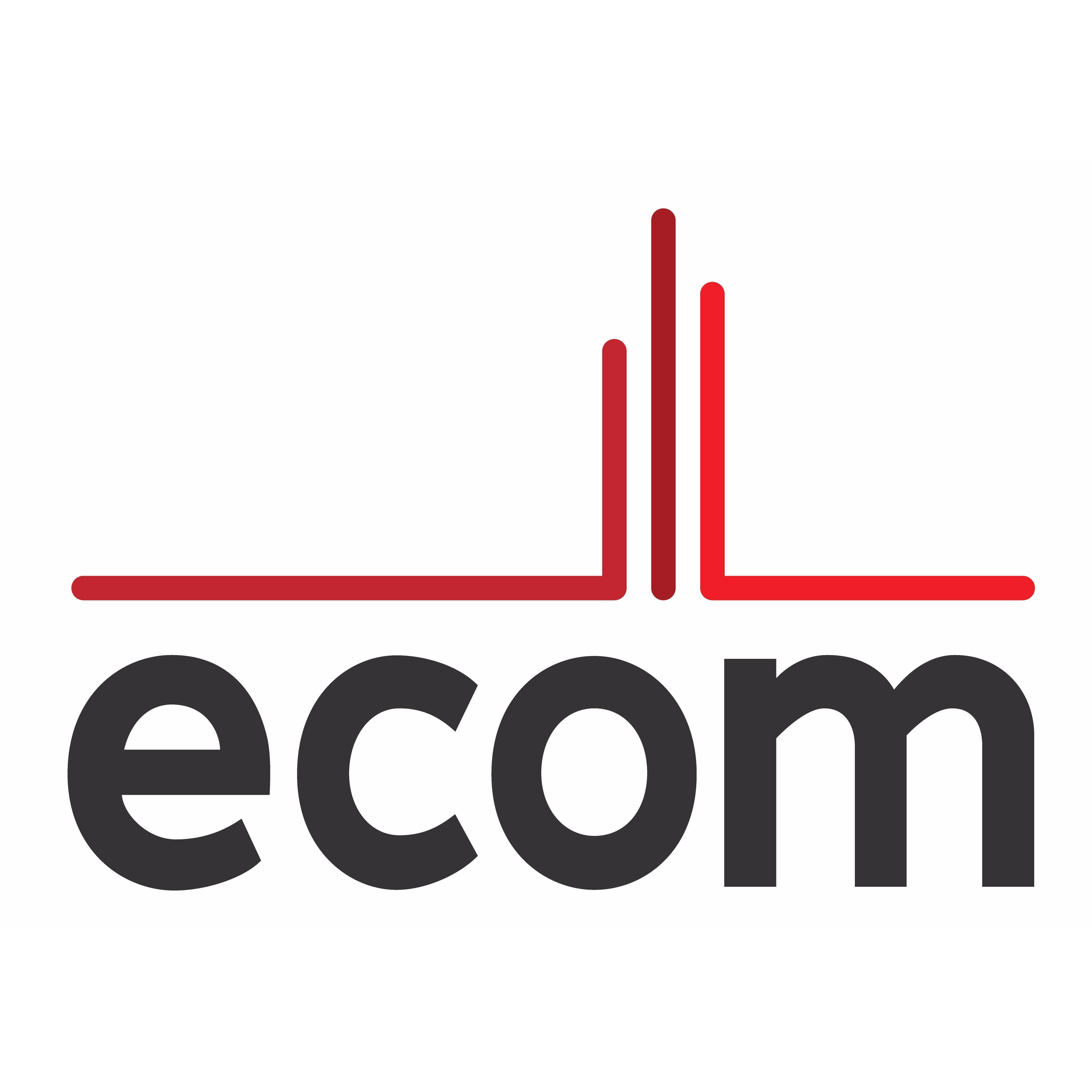 Logo Ecom Services
