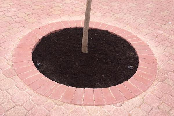 Alfredo Olvera Landscaping image 1