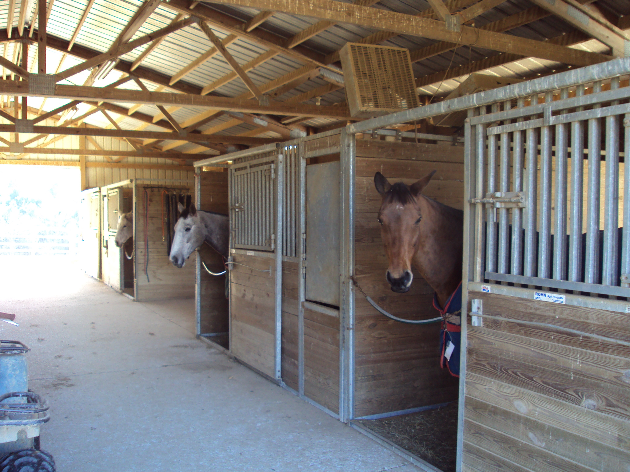 Beech Grove Stable and Kennels image 10