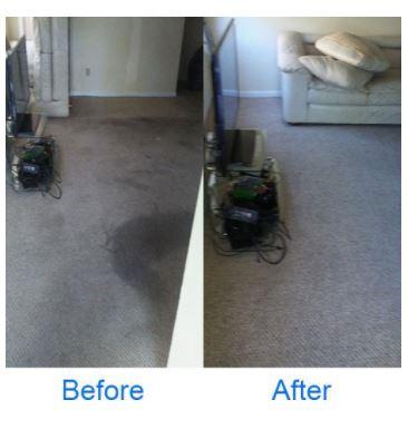 Deep Clean Carpet Clean image 4