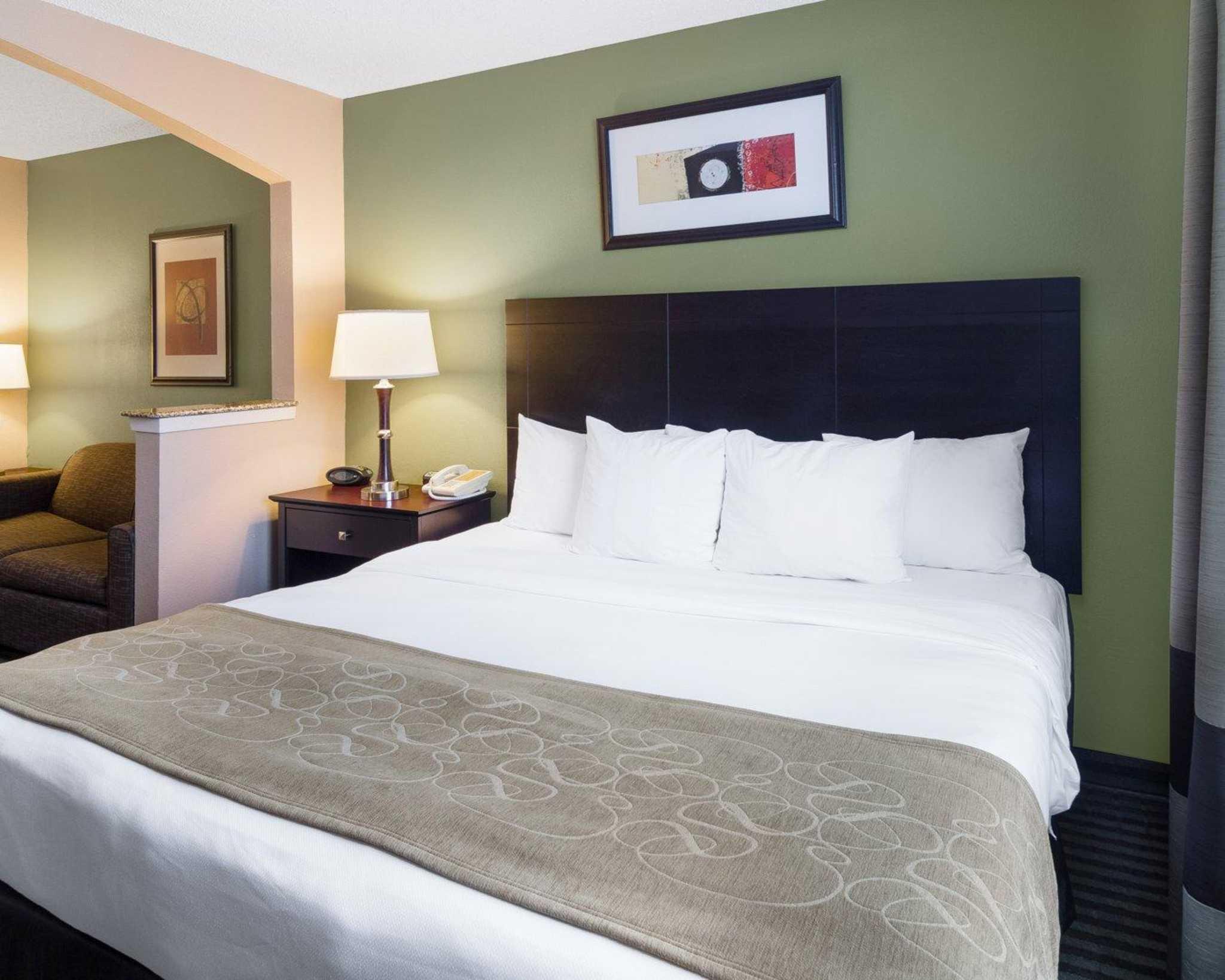 Comfort Suites Las Colinas Center image 23