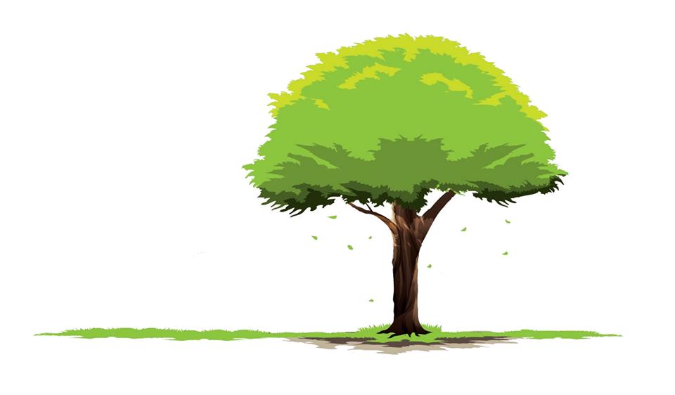 Woodland Insurance Group image 7