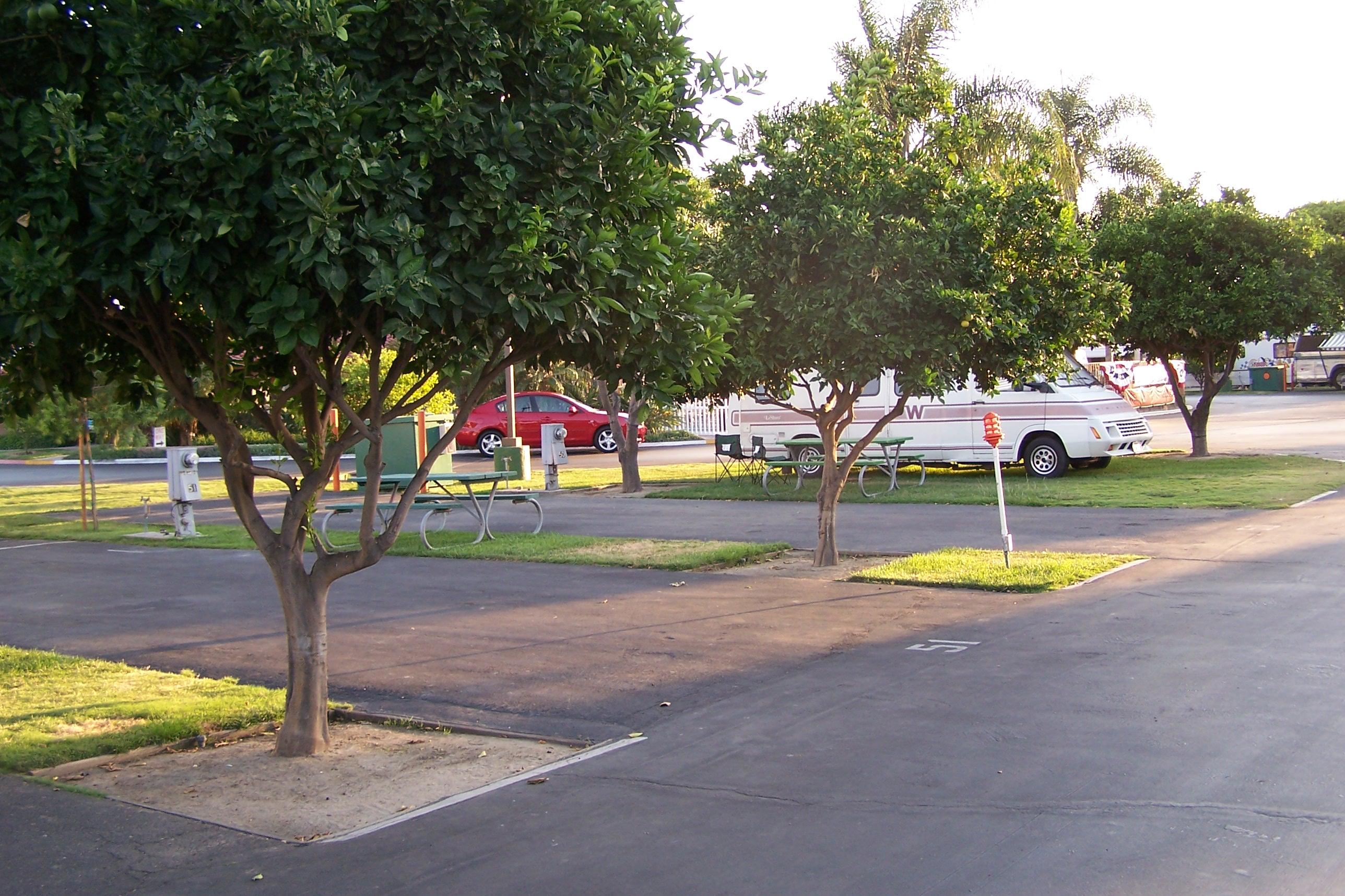 Orangeland RV Park image 23
