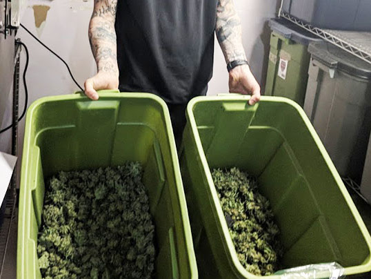 Green Street Medicinals | Medical Marijuana Delivery San Diego, CA image 1