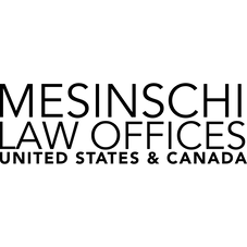 Mesinschi Law Offices, PLLC