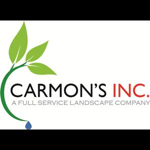 Carmon's Inc.