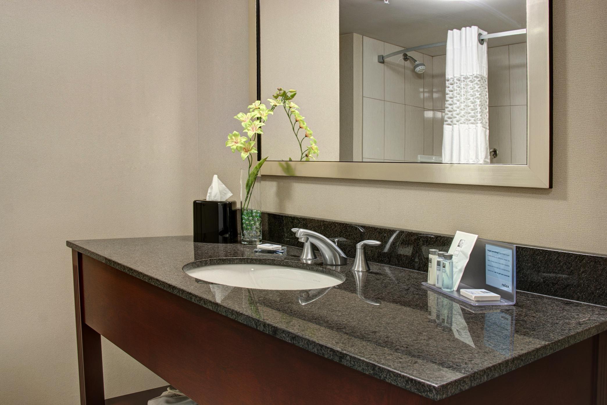 Hampton Inn by Hilton Brampton Toronto in Brampton: Standard Bathroom Vanity