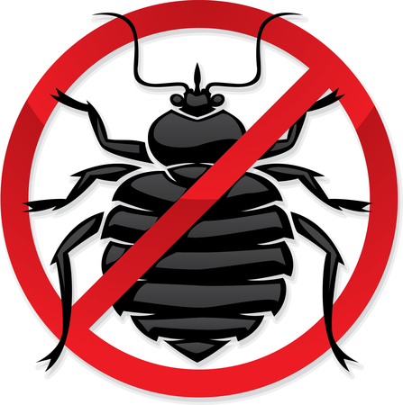 Bed Bug Elimination