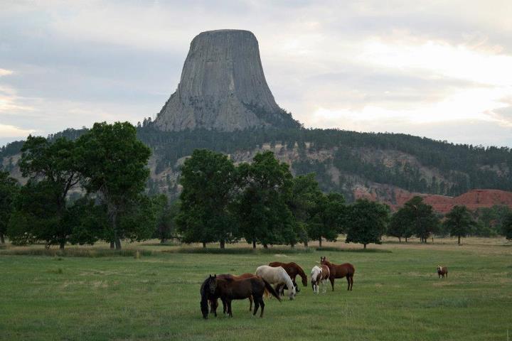 Devils Tower / Black Hills KOA Journey image 16