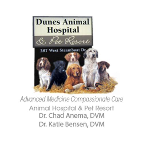 Dunes Animal Hospital image 5