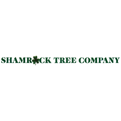 Shamrock Tree Company