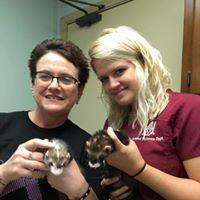 Preferred Veterinary Care image 3