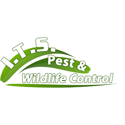 I.T.S. PEST & WILDLIFE CONTROL