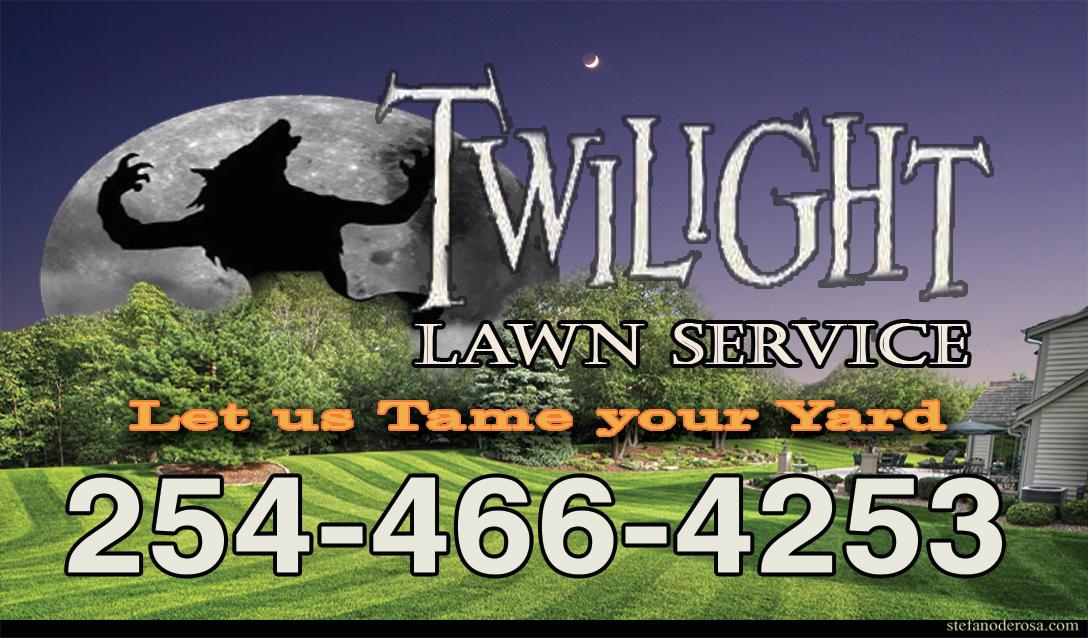 Twilight Lawncare image 4