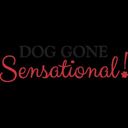 Dog Gone Sensational image 10