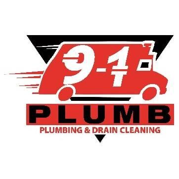 9-1 Plumb image 0