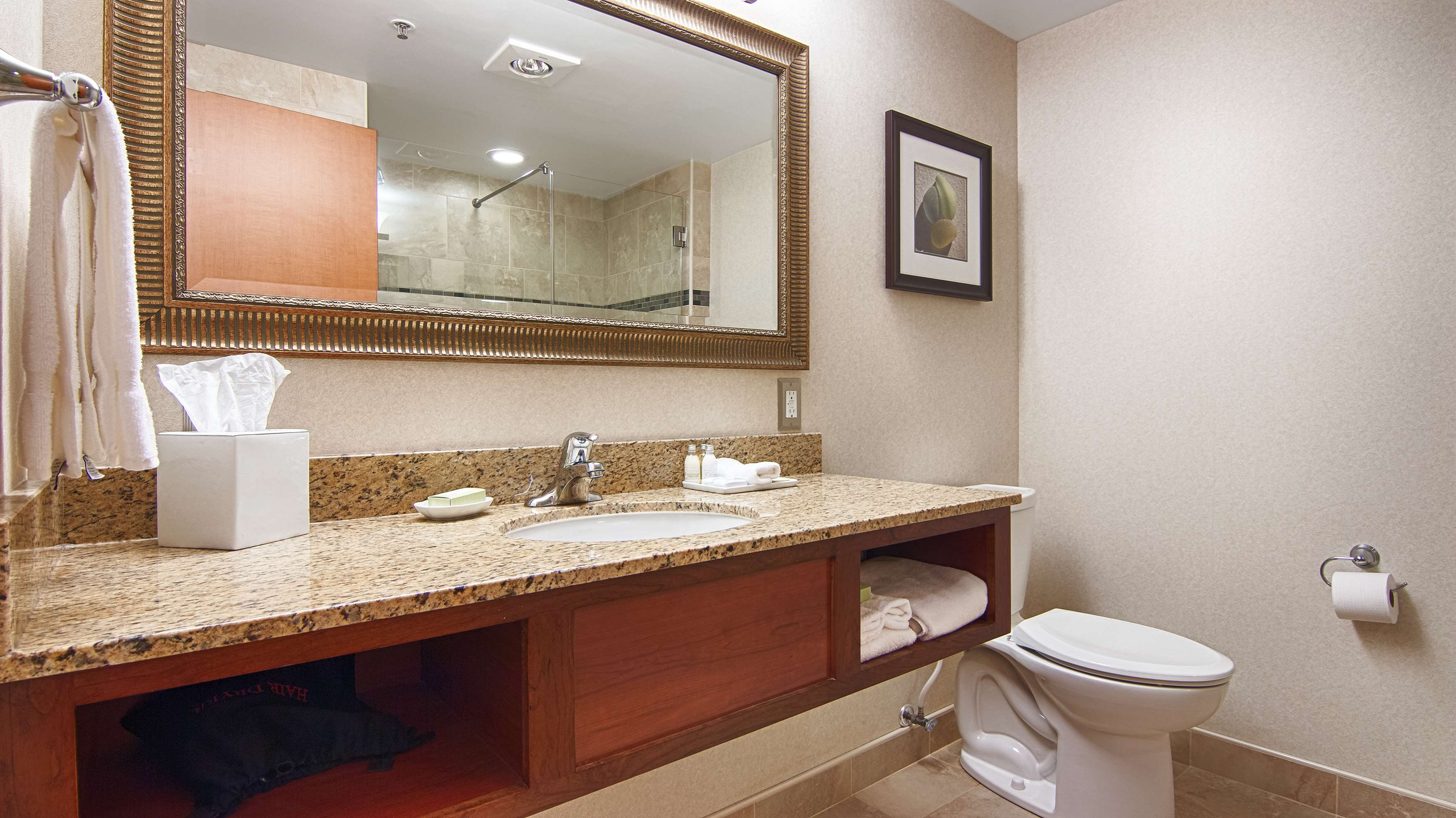 Best Western Plus Oswego Hotel and Conference Center image 20
