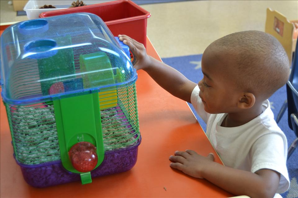 Red Bank KinderCare image 10