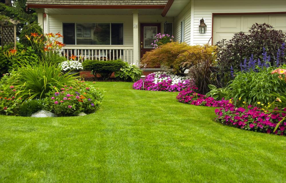 Campos Greenview Landscape image 3