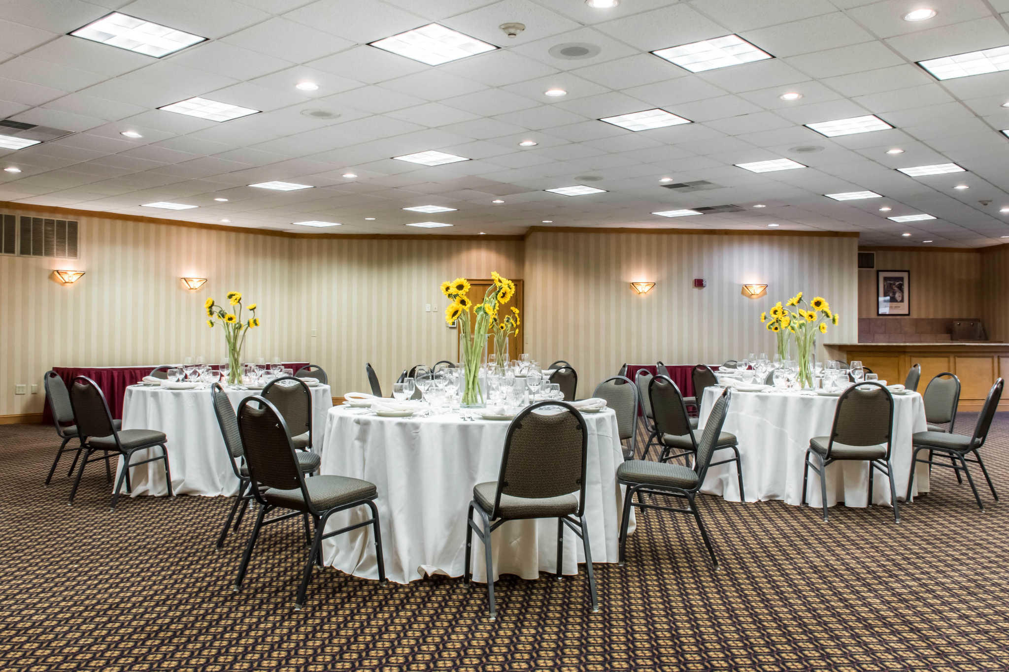 Comfort Inn Lancaster County North Denver Pa Company Page