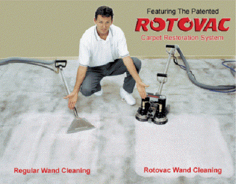 Potter's Carpet Cleaning image 4