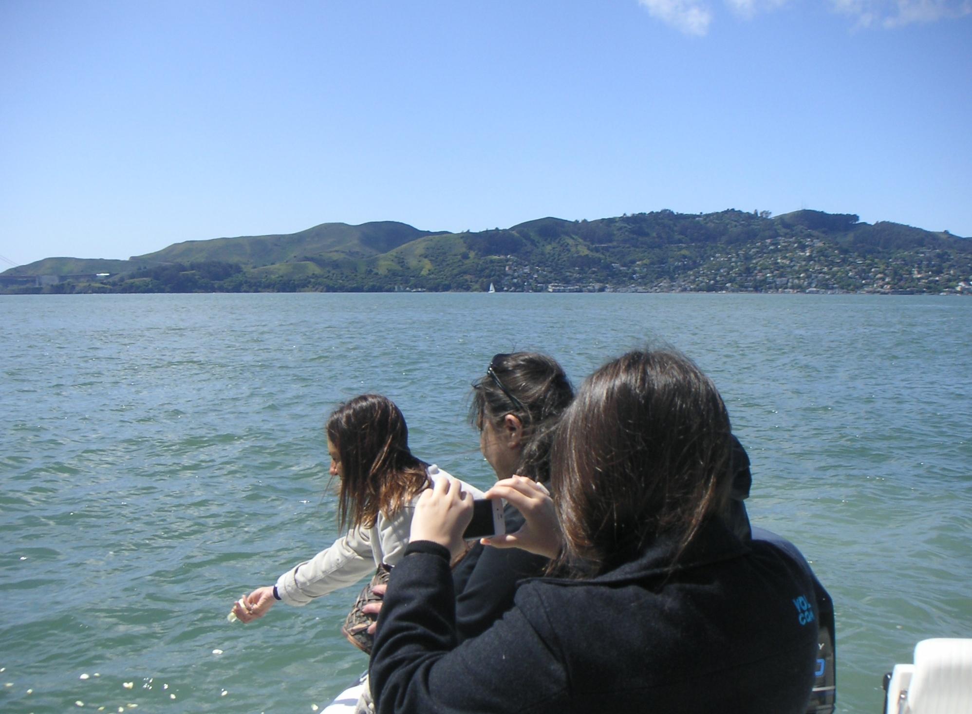 Oceanic West image 18