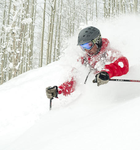 American Ski Exchange image 3