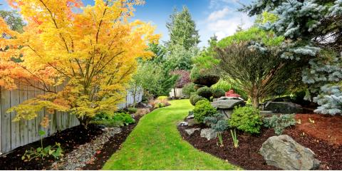 Allcare Tree Service and Stump Grinding image 0