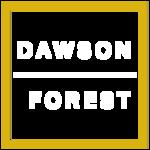 Dawson Forest image 5