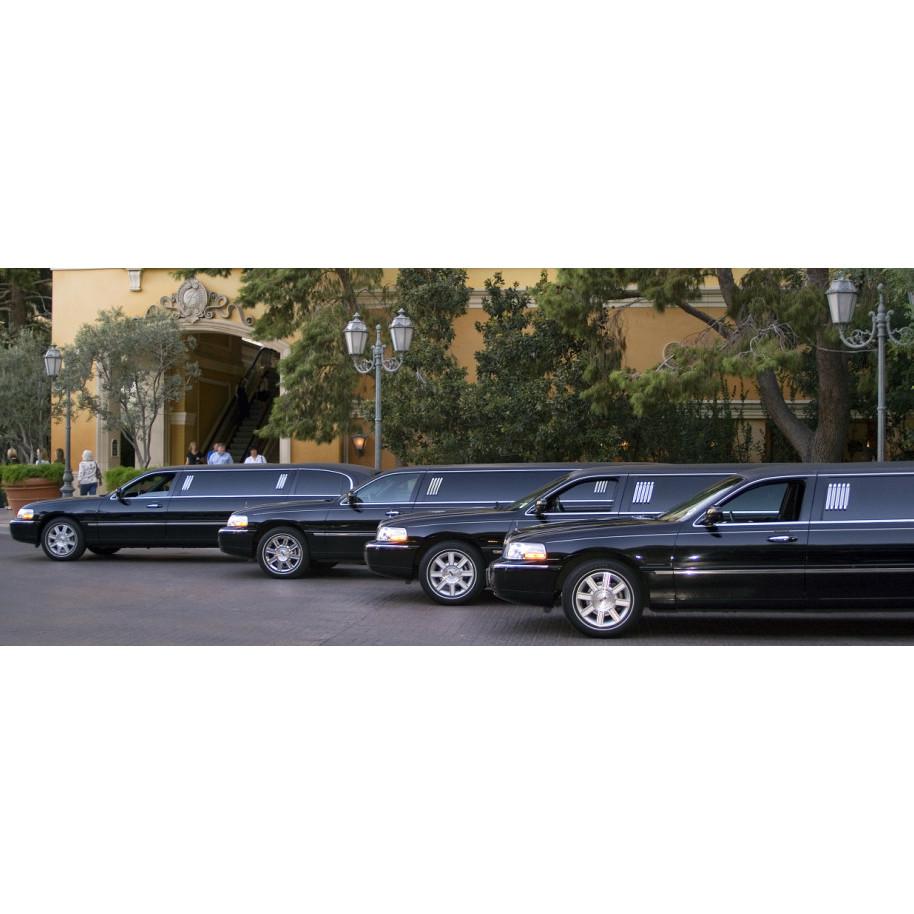 Denver Limousine etc - Denver, CO 80219 - (303)936-7895 | ShowMeLocal.com