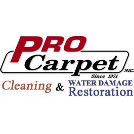 Pro Carpet image 14