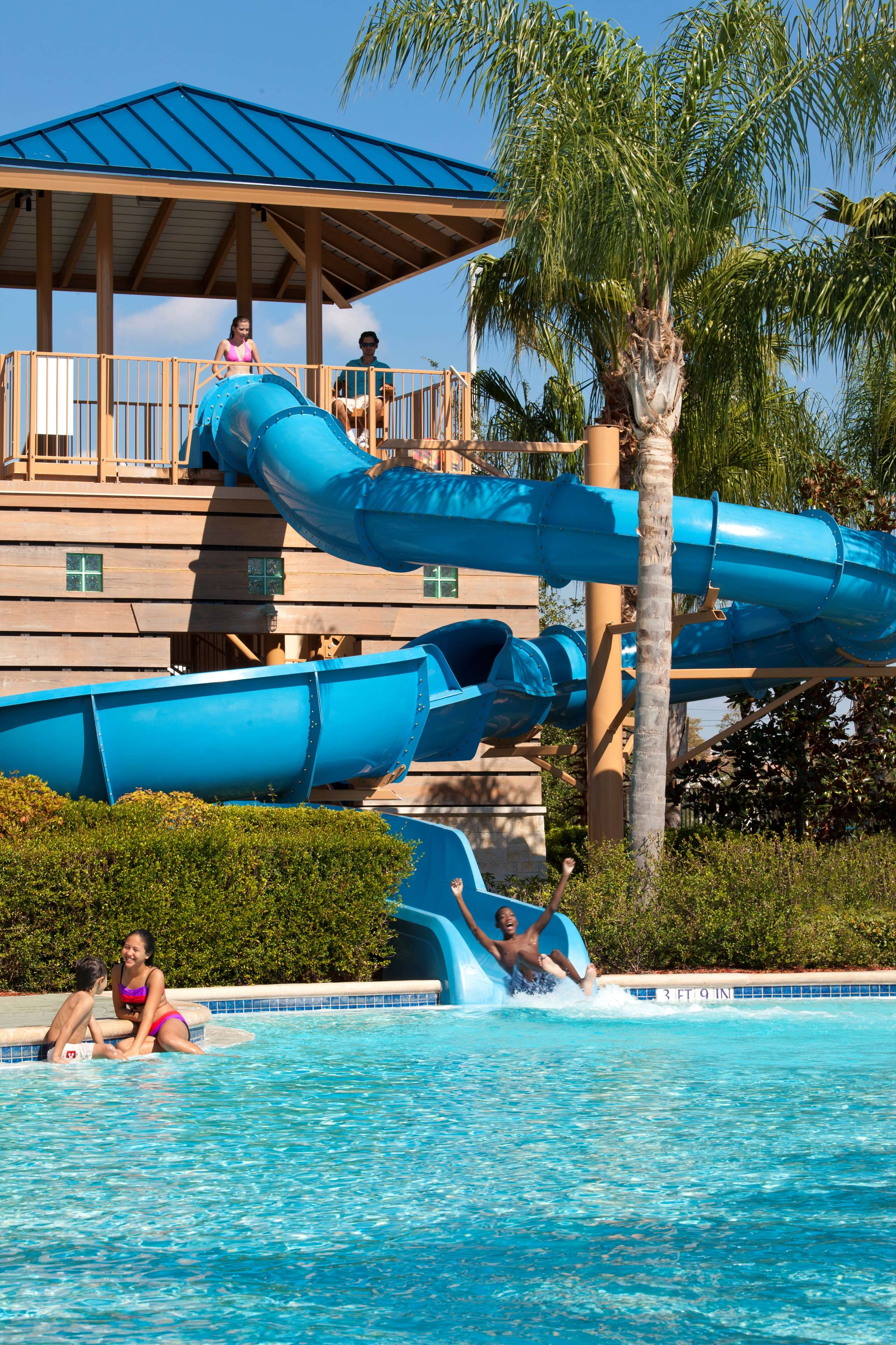 Hilton Orlando image 10