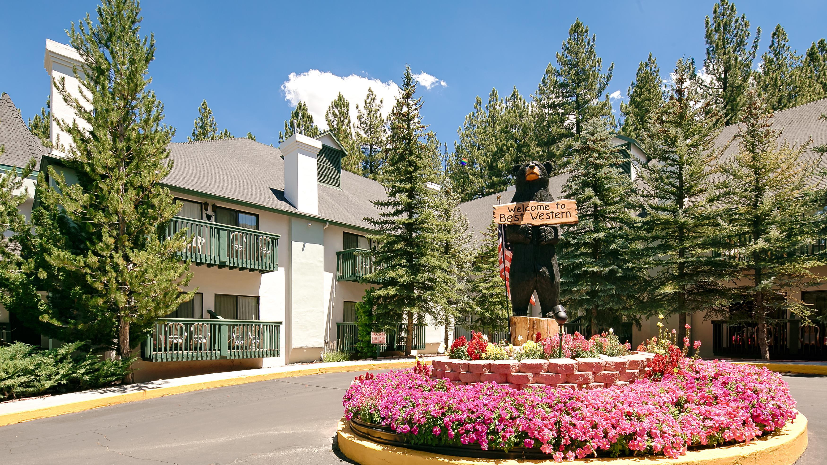 best western big bear chateau in big bear lake ca 909. Black Bedroom Furniture Sets. Home Design Ideas