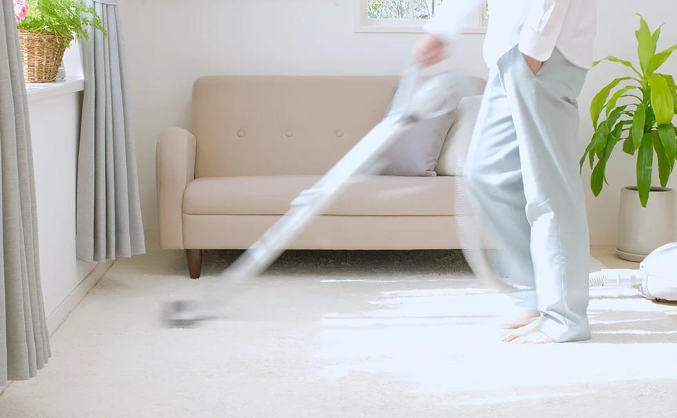Pro Clean of Michigan (Carpet Cleaning) image 1