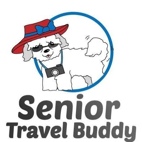 Senior Travel Buddy